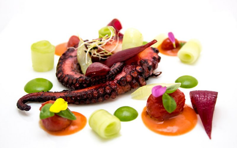 Roasted octopus with celery, cherry tomatoes, onions and cucumber salad on basil cream